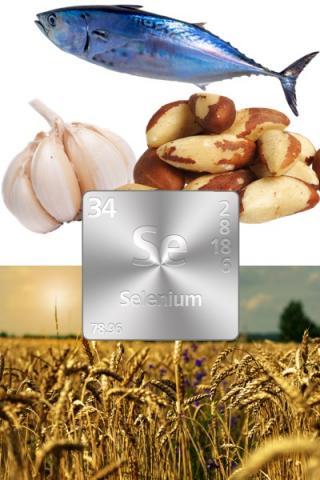 Ingrediënt van de week: 6 feiten over selenium die u niet wilt missen (1 van 3)