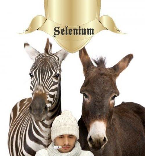 Ingrediënt van de week: twee andere feiten over selenium die u niet wilt missen (deel 2 van 3)