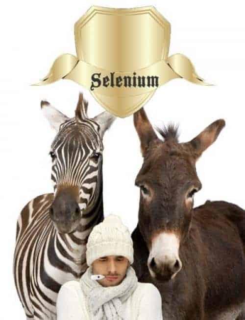 selenium voor schildklier en immuunsysteem